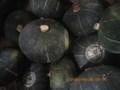 坊ちゃん栗かぼちゃ 北海道産 農薬化学肥料不使用 ホクホク系 1キロ