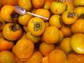 甘柿 生口島産 栽培期間中 農薬化学肥料不使用