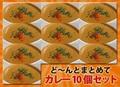 【送料無料】3種のカレー10食とプレーンナン5枚チーズナン5枚のセット