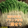 【三関せり通販】湯沢市三関地区特産ブランドせり