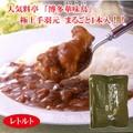 博多華味鳥(はなみどり)手羽元カレー(中辛)12食セット