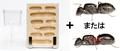 クロオオアリまたはムネアカオオアリ+蟻マシンセット