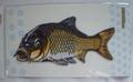 鯉のワッペン サイズ大 1個入