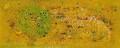【この超限定】テーマは、やっぱり、・・・・Ikutomo Kuroki・Woodblock・とり・鳥!!黒木 郁朝(くろき いくとも)の木版画 作品 題名:とり  専用オリジナル額付き(簡易化粧箱入り)  【 ビーグラッド通販 】