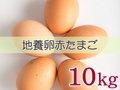 たまごづくし A-④ 地養卵赤たまご 10kg