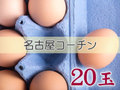 たまごづくし C-① 名古屋コーチン 20玉