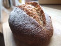 04.全粒粉入りパン(2個入)【 焼きたてパン[常温]】