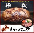 お試し☆網焼きハンバーグ200g×2個 【送料無料】