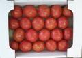デリシャストマトA品3kg箱(満杯詰め)