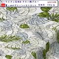 【ハワイアン生地】アロハ柄プリントブルー色(50cm単位)