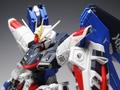 【プレミアム完成品】バンダイ MG 1/100 フリーダム Ver.2.0