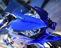 YZF-R3/R25 MotoGPタイプ ウイングレット