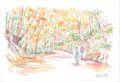 ひとまち百景ポストカード 紅葉の原始林