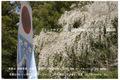 熊野本宮 やたがらす  A3 のび 額縁プラス写真