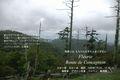 2009年 7月 1日  大台ヶ原 日出ヶ岳 13 A3のび 329mmx483mmm