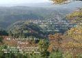 2009年 晩秋の吉野 櫻と紅葉 展望台  NO 70 A3ノビ プリント  329mmx483mmm