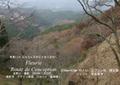 2009年 晩秋の吉野 櫻と紅葉 上千本  NO 074 A3ノビ プリント  329mmx483mmm