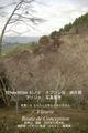 2009年 晩秋の吉野 櫻と紅葉 上千本  NO 84 A3ノビ プリント  329mmx483mmm