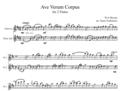 ②アヴェ・ヴェルム・コルプス/モーツァルト/フルート二重奏