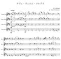 ④アヴェ・ヴェルム・コルプス/モーツァルト/フルート四重奏