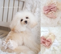 Manner Lingerie Rose Allure(マナーランジェリーロゼアリュール)♪☆Pink Beige/Ecru☆