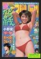 週刊ビッグコミックスピリッツ -どっかん愛だぜ!!! 小野愛- 2002年4月1日号