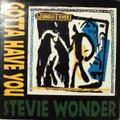 STEVIE WONDER / GOTTA HAVE YOU