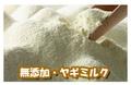 オーストラリア産  無添加ヤギミルク ゴートミルク 100g