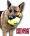 大型犬用 おもちゃ エアコングフットボール Lサイズ