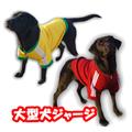 大型犬 GOLPARAオリジナルジャージ