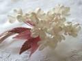 しなやかに咲く白い花
