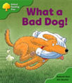 ORT stage 2 storybooks- Big Book pack