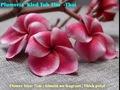 【1鉢限定】マーブル咲の美花品種・鉢植えプルメリア 'Kled Tubtim' 接木苗(越冬株・ワンサイズ上の5号鉢)