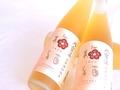 【大雪溪酒造】大雪渓 梅酒【純米酒仕込】