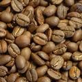 マハラジャ 珈琲豆