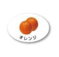 ZY-9 フルーツシール オレンジ