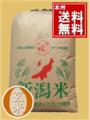 2年新潟産コシヒカリ玄米1等25㎏ 【玄米選別済】