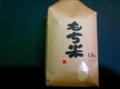 新潟県新潟市 わたぼうし もち米(白米)1升(1.5kg)