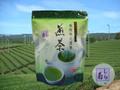 【本格派】深蒸し煎茶ティーパック≪しら菊≫5g×100p