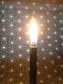 Haze 麻炭和蝋燭 NEW