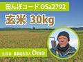 生きもの元気米(減農薬)・田んぼOSa2792の玄米30kg ゆめみづほ
