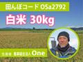 生きもの元気米(減農薬)・田んぼOSa2792の白米30kg ゆめみづほ