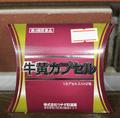 【第3類医薬品】牛黄カプセル 100mg x 2カプセル