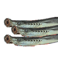 乾燥八ッ目鰻 特選(1匹70g程度)