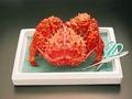 花咲蟹 1尾入れ 特大