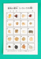 い)「いろいろな種(穀物の標本)」シート完成見本(30108)