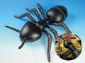 き)巨大昆虫風船5種セット(30107)