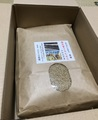 南木曽イセヒカリ 玄米10kg(無農薬天日干自然乾燥)