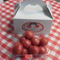 ソプラノトマト 1パック(1kg)