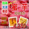 熊本産 サツマイモ 紅はるか 蜜芋 10kg入り 送料無料